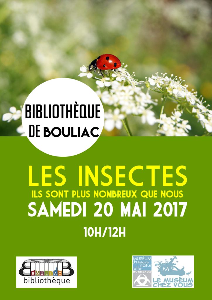 affiche insectes